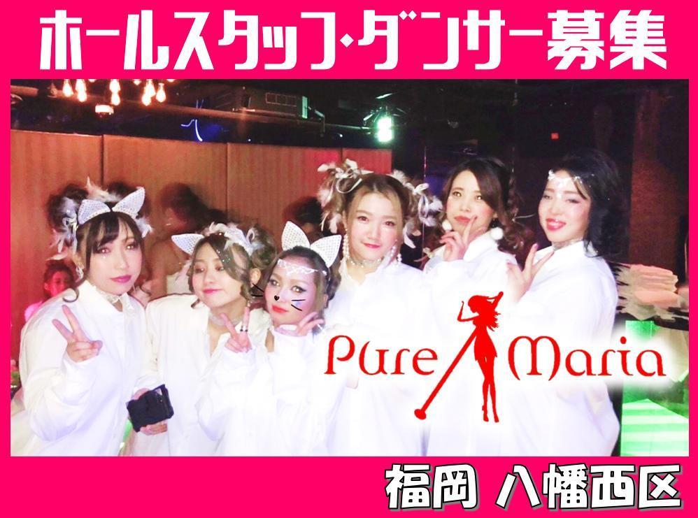 Pure Mariaの求人情報・ショーイベントスタッフ・アルバイト・お祝い金・北九州市・八幡西区